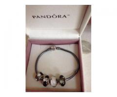 pandora charm bracelet new york city